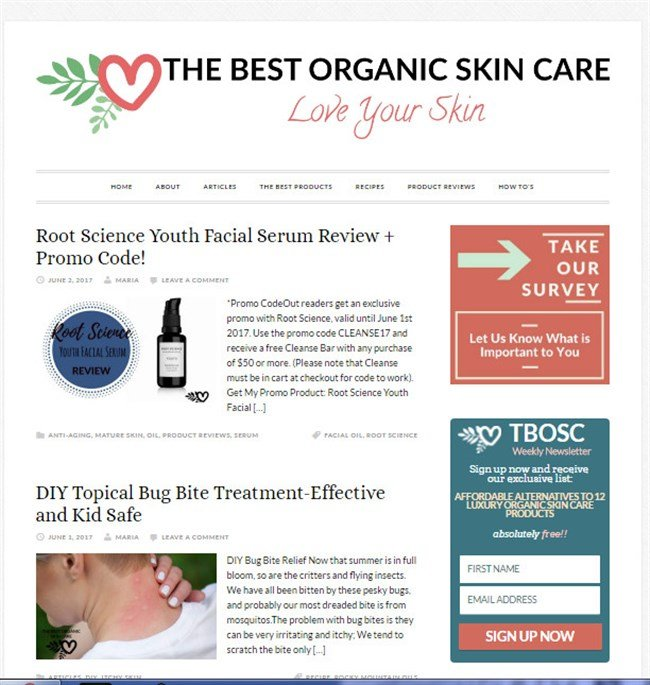 The Best Organic Skin Care Blog